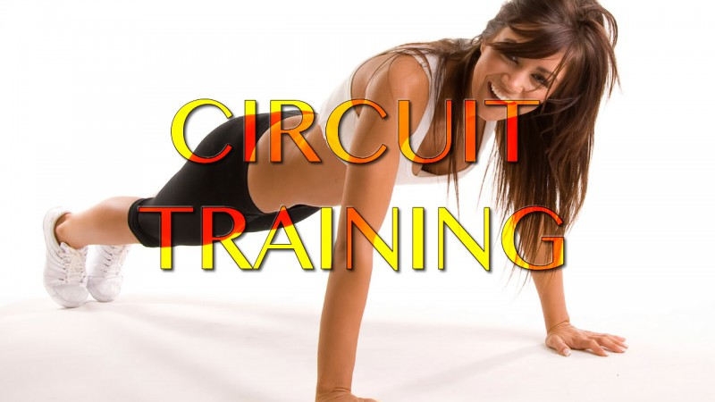 Circuit Classes